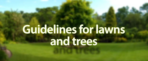 Vastu for lawns and trees
